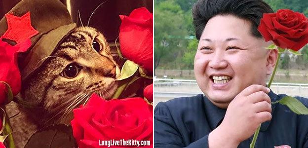 chairman meow kim jong roses