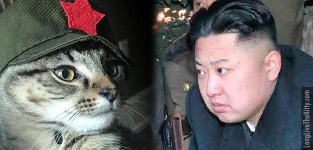 chairman meow kim jong un_stare