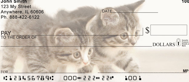checks mail cats