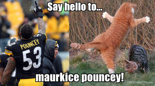 maurkice pouncey cat name